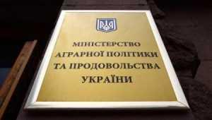 Кубань стала регионом-лидером Российской Федерации поурожайности зерновых