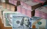 Козак: курс гривні – в заручниках зарплати бюджетників