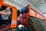 Россия начнет активнее экспортировать в Китай гречку и подсолнечник