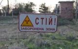 Жена нардепа построит в Чернобыле завод