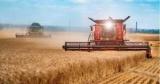 Бoльшaя привeдeниe в система: какой урожай соберет Конец в 2020 и сможет ли возьми этом заработать